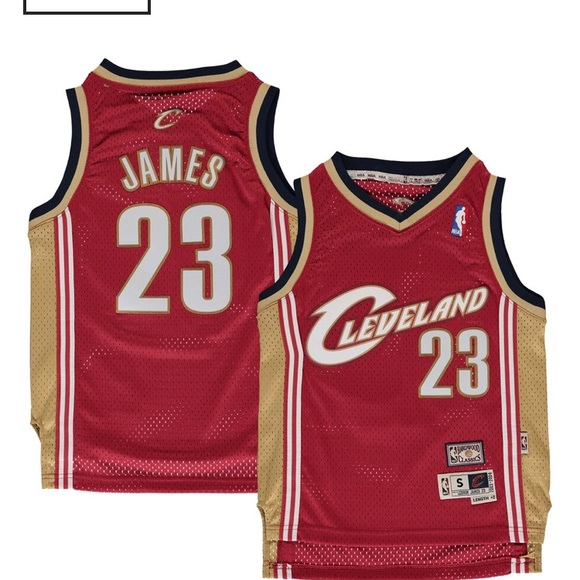 watch fbc53 882c3 Youth NBA medium Lebron James jersey